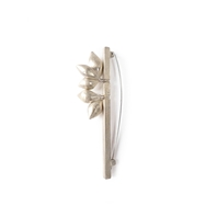 Sepiola brooch with 5 silver seeds